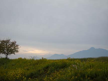 関川の土手から見る妙高山