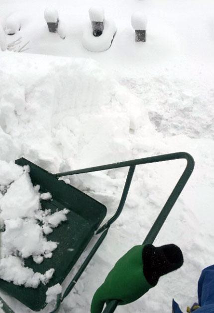 雪を落とす所の脇は、お墓