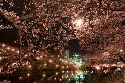 桜の中に高田城