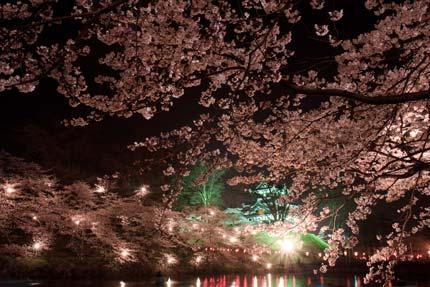 高田城を望む風景