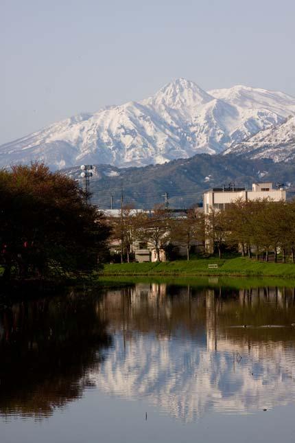 妙高山も跳ね馬で春の到来を告げています
