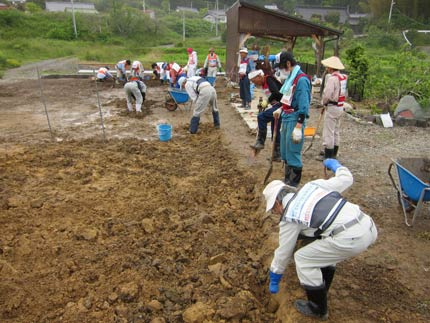 畑の瓦礫撤去作業