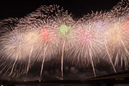 長岡の花火14フェニックス