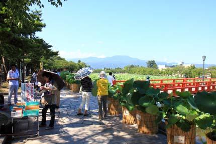 上越はすまつりの高田公園
