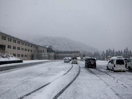 初雪を体験