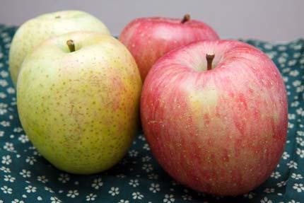 訳ありのリンゴ