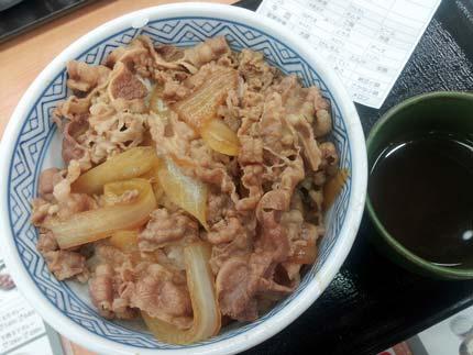 牛丼並盛り(吉野家)
