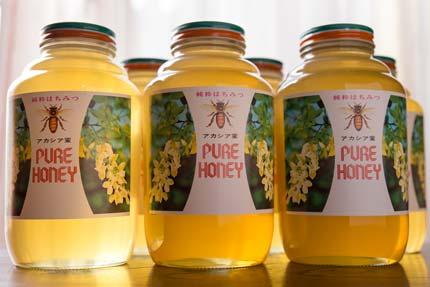 芳川養蜂場さんのアカシア蜜