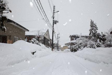 チラチラと積もる雪
