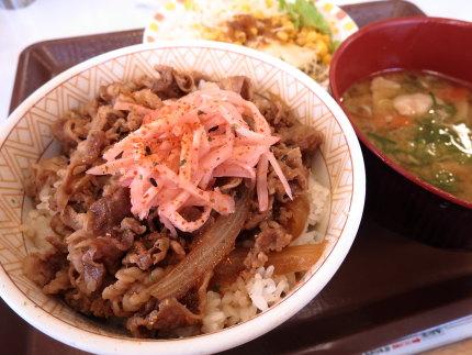 牛丼並の豚汁サラダセット529円