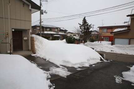 1月25日(日)の上越大貫の積雪状況