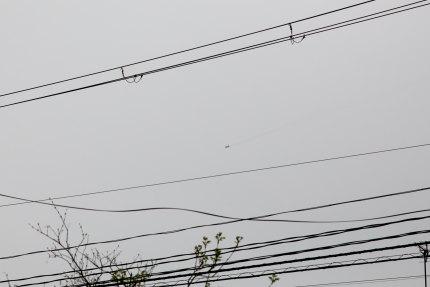 ブルーインパルスが演技飛行の予行演習