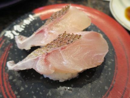 金沢港直送の真鯛