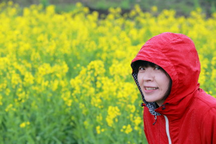 妙高高原大洞原の菜の花