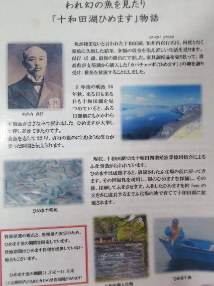 和井内貞行さんが十和田湖ひめますの養殖に成功