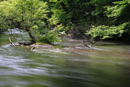 石ヶ戸の瀬付近4