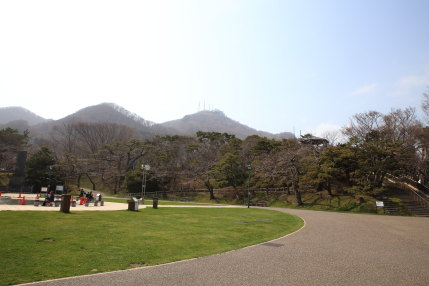 函館山を望みながら