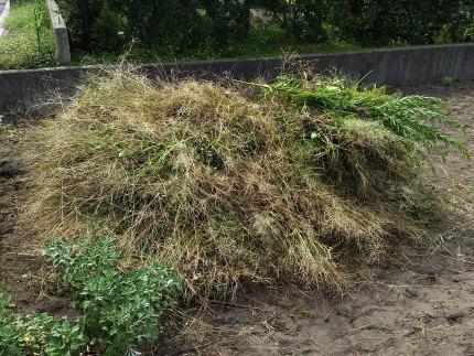 刈った草の量