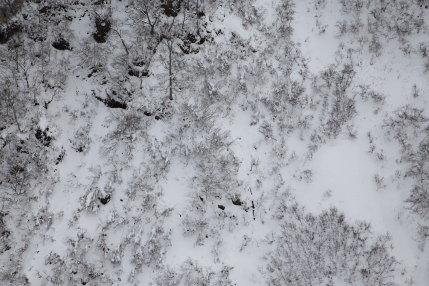 山肌が少し見える雪景色