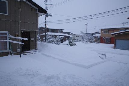 1月24日(水)