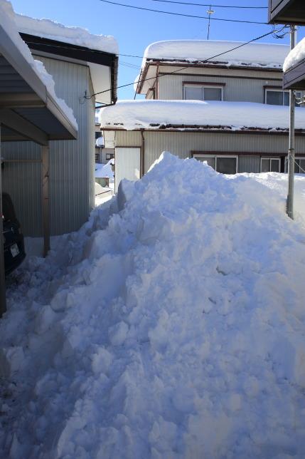 カーポートと小屋の後ろにおろした雪