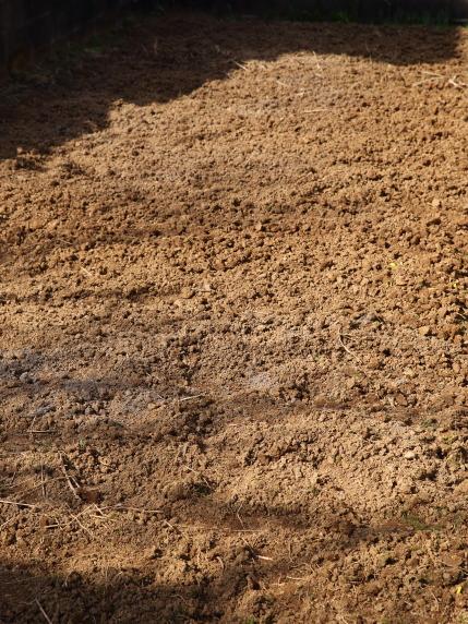 畑の土を念入りに耕しました