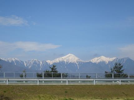雪を被った綺麗な山