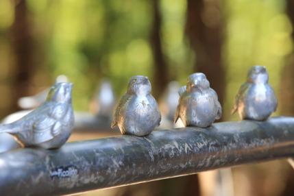 可愛い雀たち