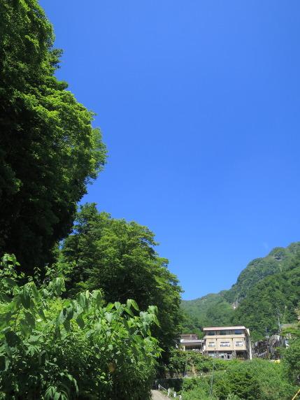 初夏の匂いのする山の風景