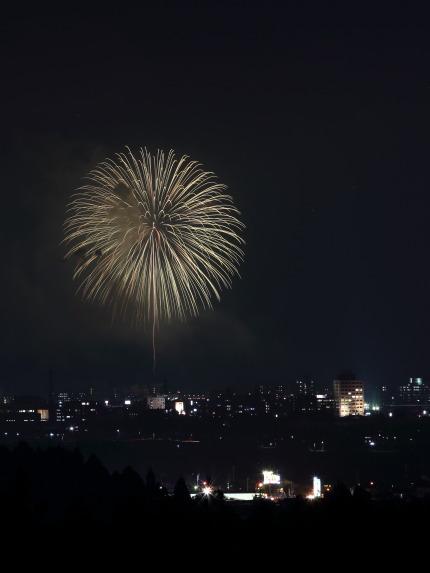 金谷山から花火
