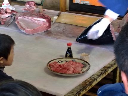 生本マグロの刺身試食