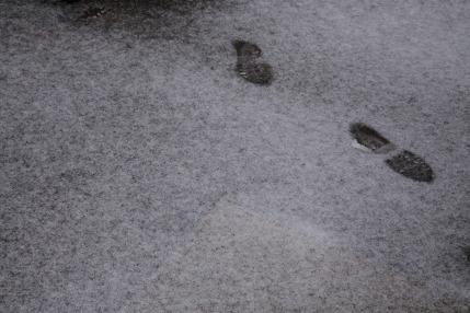 1cm位の積雪