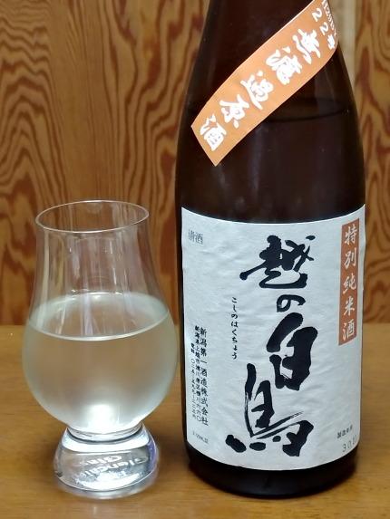 越の白鳥特別純米酒を飲みました