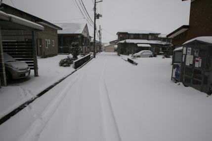 朝方、午前中と雪が降り