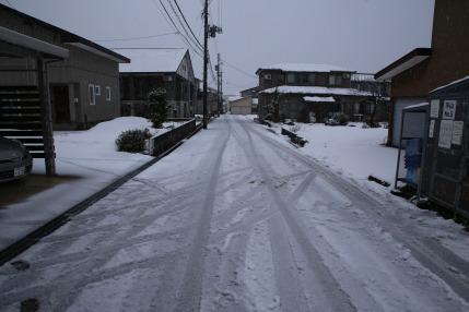 この程度の雪