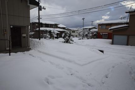 上越高田の冬