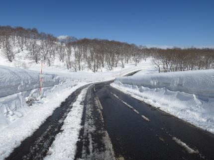 晴れて雪景色も栄え、美しかった