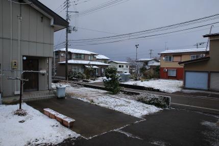 雪が降ってしまいました