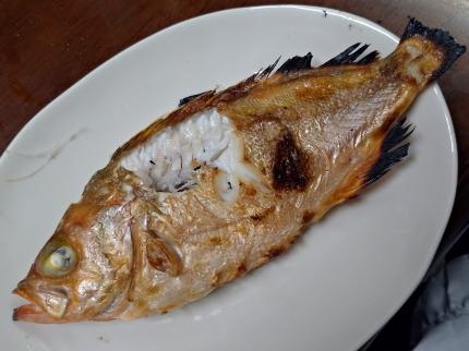セイカイ(ウスメバル)の塩焼き