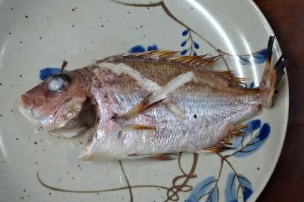 鯛を塩焼き