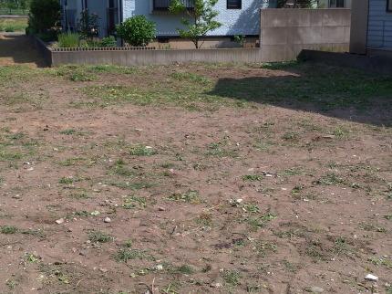 全部の草を刈ることが出来ました