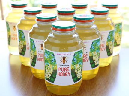 国産アカシヤ蜂蜜
