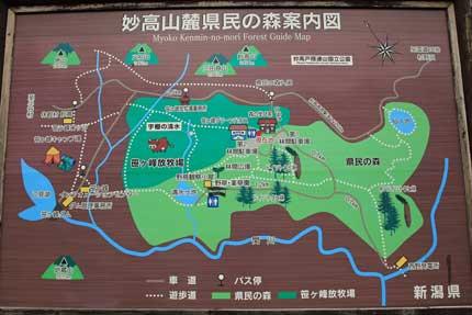 妙高市笹ヶ峰高原