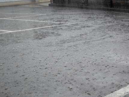 雨が降りました