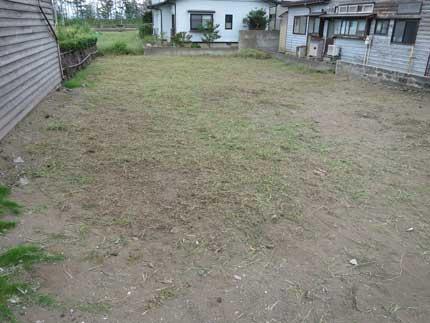 草刈り完了