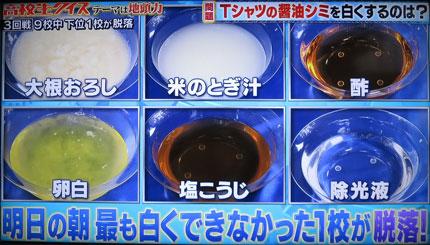 大根おろし、米のとぎ汁、酢、卵白、塩麹、除光液