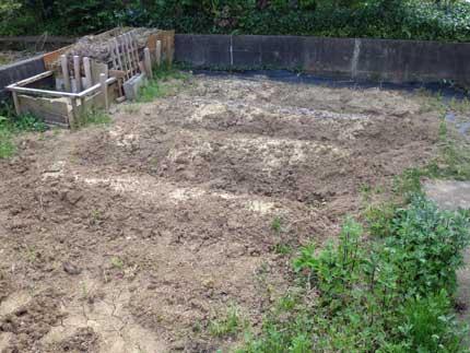 南側の耕作地