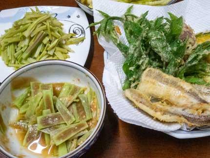 天ぷら、酢みそ和え、きんぴら