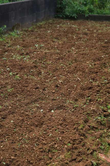 耕耘機で畑を耕しました