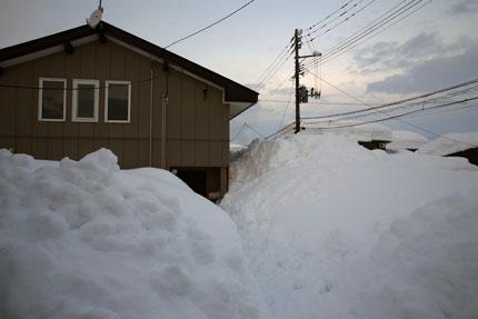 1月11日(月・祝)上越市大貫の雪の状態